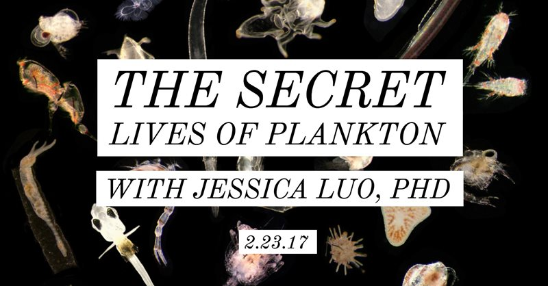 February Social: The Secret Lives of Plankton