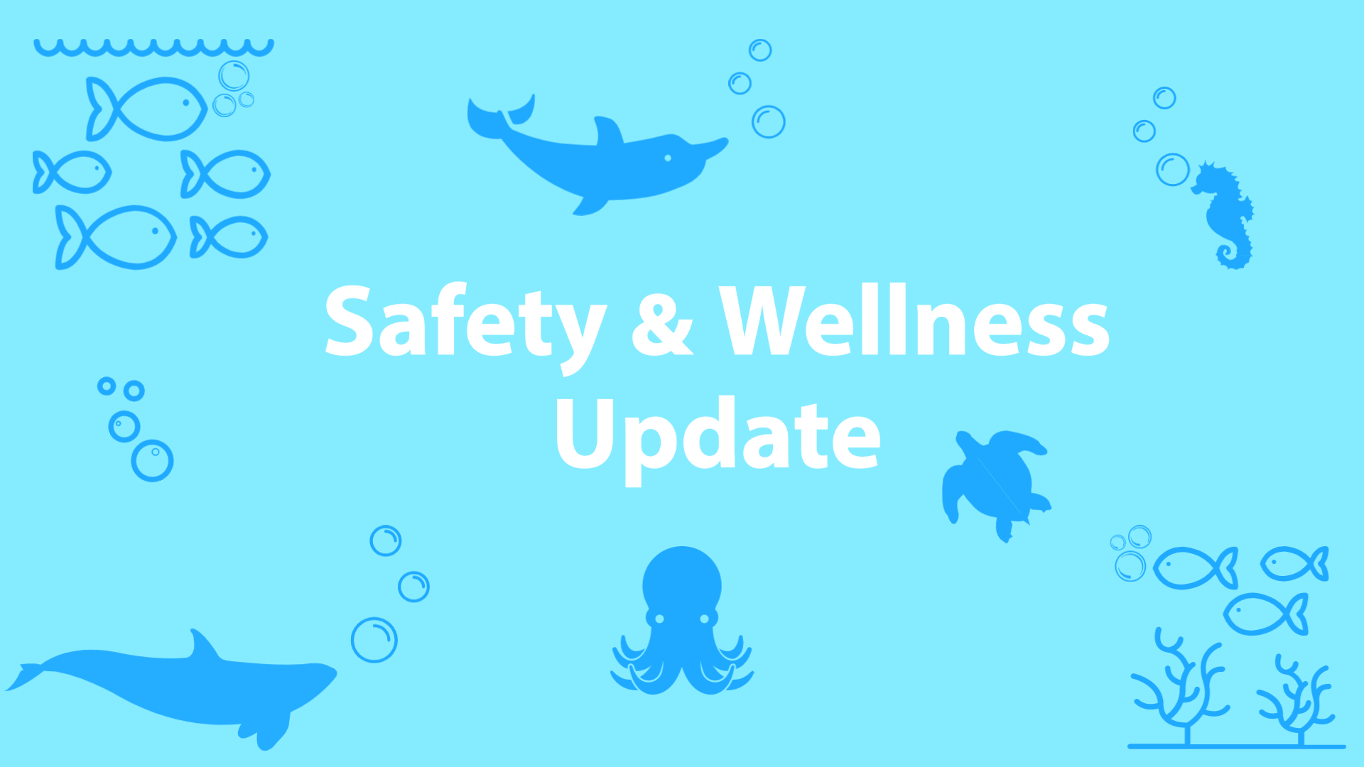 Safety & Wellness Update