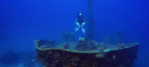 Meet the Diver of the Month, Sarah!