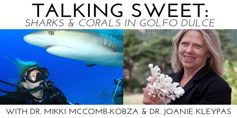 April Social: Talking Sweet - Sharks & Corals in Gulfo Dulce