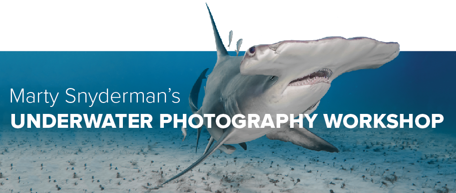 Marty Snyderman Underwater Photo Workshop