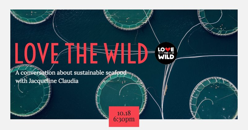 October Social: Love The Wild with Jacqueline Claudia