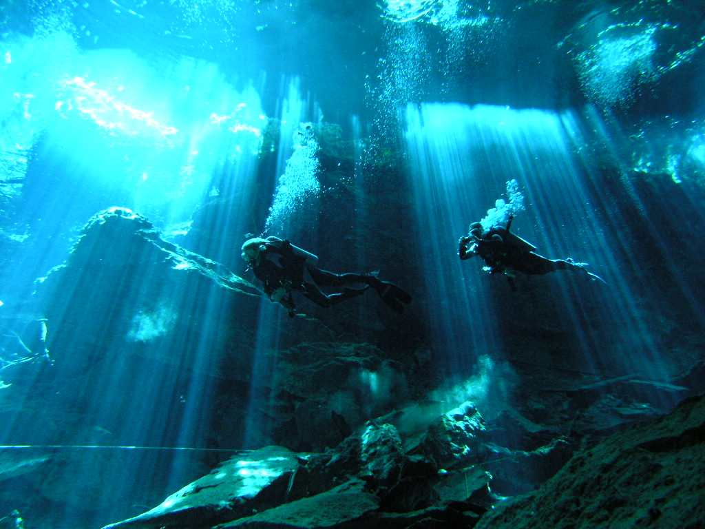 Upcoming scuba diving vacations ocean first cozumel xflitez Choice Image